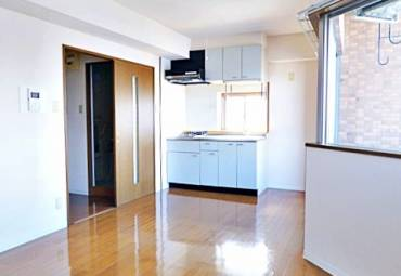 プロビデンスサーリII 802号室 (名古屋市中区 / 賃貸マンション)