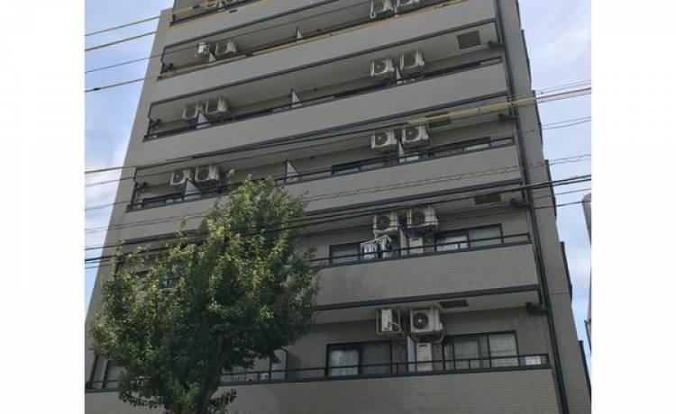 サクセス川原 504号室 (名古屋市昭和区 / 賃貸マンション)