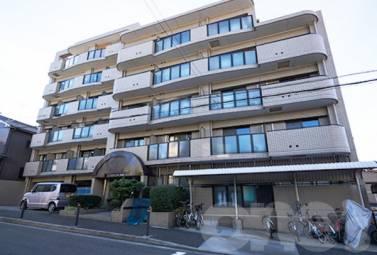ビハーラ白壁 210号室 (名古屋市東区 / 賃貸マンション)