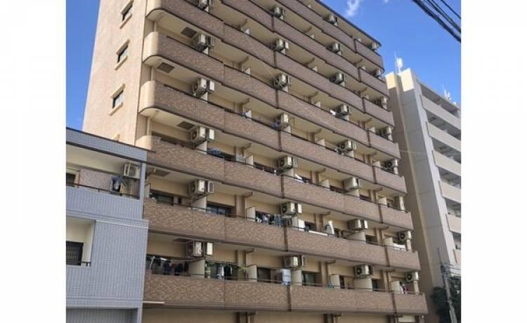 メゾン・ド・セティエーヌ 803号室 (名古屋市中区 / 賃貸マンション)