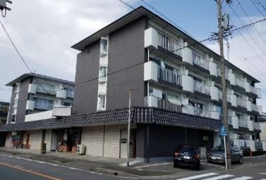 シャトー共栄 B302号室 (名古屋市西区 / 賃貸マンション)