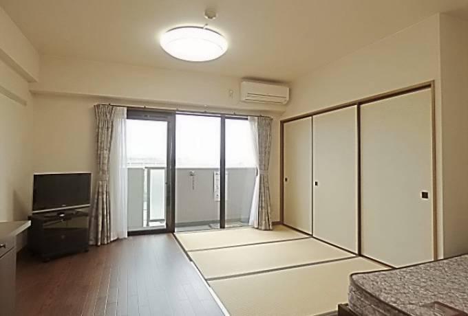 ドーミーいりなかアネックス 505号室 (名古屋市昭和区 / 賃貸マンション)