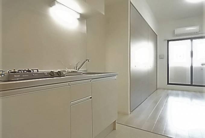 LIBERTA CARINO (リベルタカリーノ) 705号室 (名古屋市中区 / 賃貸マンション)