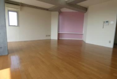 Ns21やごと B棟 305号室 (名古屋市昭和区 / 賃貸マンション)