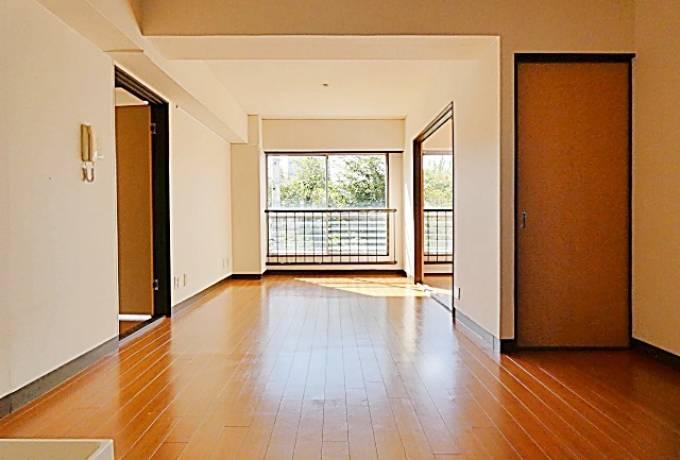 D-フラット東別院 401号室 (名古屋市中区 / 賃貸マンション)