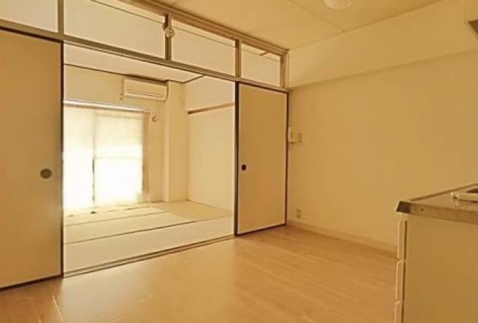 中駒九番団地7号棟 908号室 (名古屋市港区 / 賃貸マンション)
