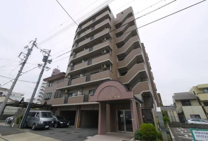 アネックス徳川西 205号室 (名古屋市東区 / 賃貸マンション)