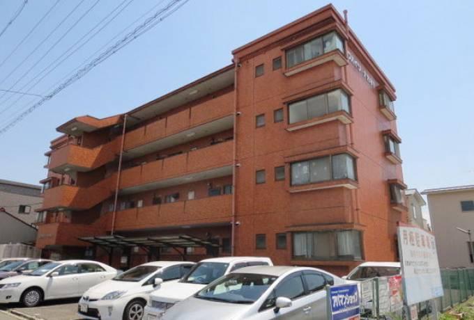 ビワハイツナカネ 205号室 (清須市 / 賃貸マンション)