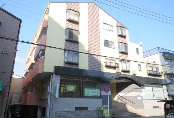 ピアニシキ 2-D号室 (名古屋市東区 / 賃貸マンション)