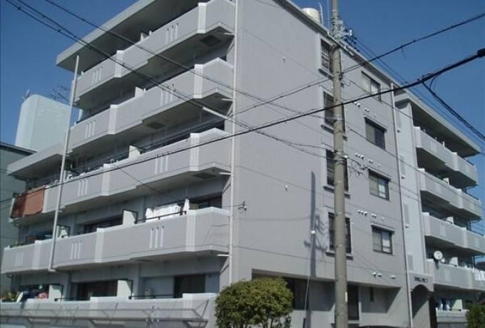 赤坪第2小菅ビル 202号室 (名古屋市南区 / 賃貸マンション)