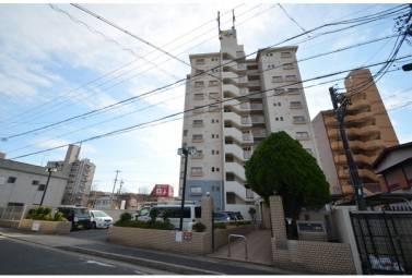 レインボー石薬師 802号室 (名古屋市天白区 / 賃貸マンション)