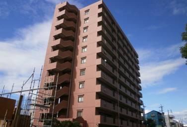 S-FORT上小田井 202号室 (名古屋市西区 / 賃貸マンション)