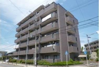 カーザアメイシア 203号室 (名古屋市中川区 / 賃貸マンション)