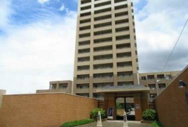 パークアクシス白壁 202号室 (名古屋市東区 / 賃貸マンション)