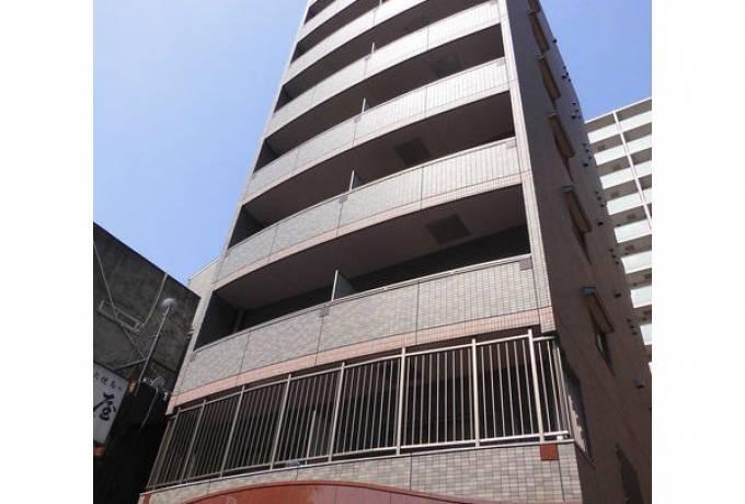 ライジング泉コートII 801号室 (名古屋市東区 / 賃貸マンション)