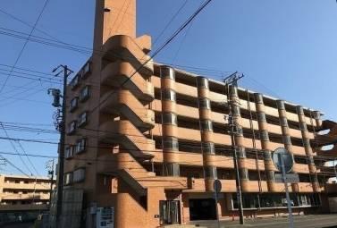 スカイハイツ塚本 2E号室 (名古屋市天白区 / 賃貸マンション)