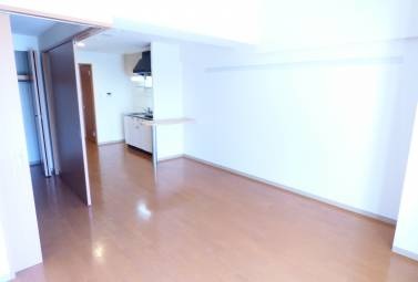 ディアコート白川 502号室 (名古屋市中区 / 賃貸マンション)